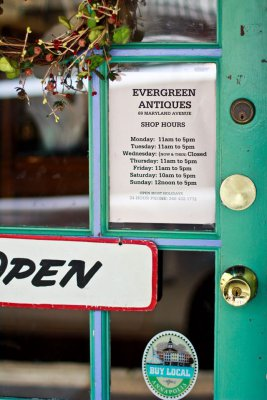 Evergreen Antiques and True Vintage Annapolis MD